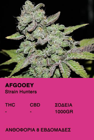 Afgooey - Strain Hunters