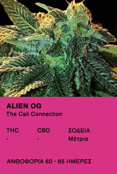 Alien OG-The cali Connection