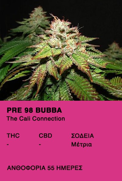 Pre 98 Bubba - The calli connection