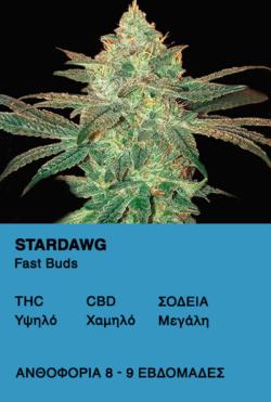Stardawg - Fast Buds