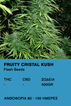 Fruity Cristal Kush Super Auto-Flash Seeds