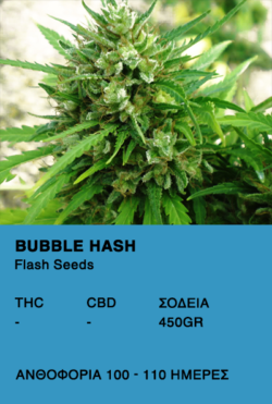 Bubble Hash Super Auto-Flash Seeds