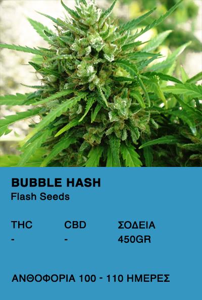 Bubble Hash Super Auto-Flash Seeds