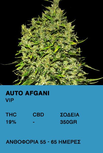 Auto Afgani-VIP