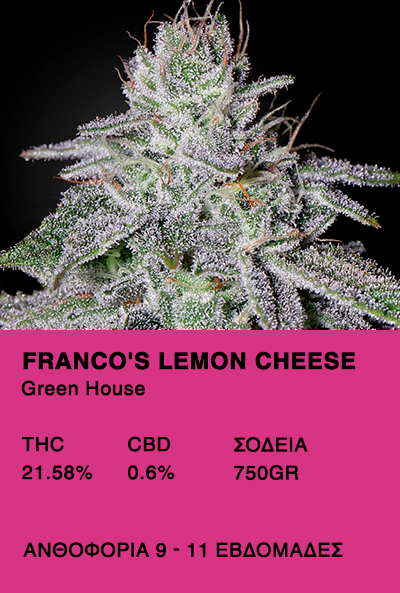 Franco's Lemon Cheese-Green House