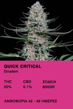 Quick Critical-Dinafem