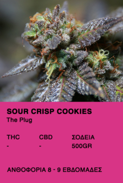 Sour Crisp Cookies-The Plug