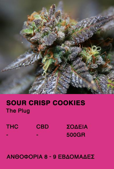 Sour Crisp Cookies-The Plug