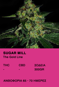 Sugar Mill - The Gold Line