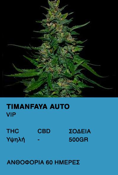 Timanfaya Auto-VIP