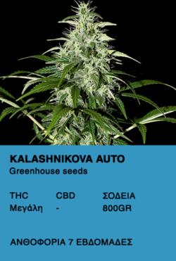 Kalashnikova Auto - Green House