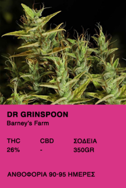 Dr Grinspoon