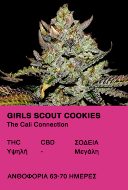 Girl Scout Cookies - The Call Connection
