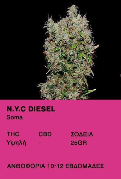 N.Y.C. Diesel -Soma