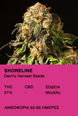 Shoreline - Devil's Harvest Seeds