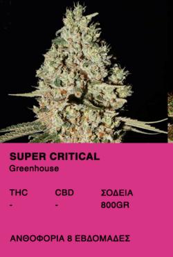 Super Critical - Greenhouse