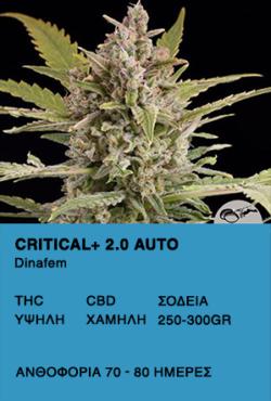 Critical+ 2.0 Auto - Dinafem